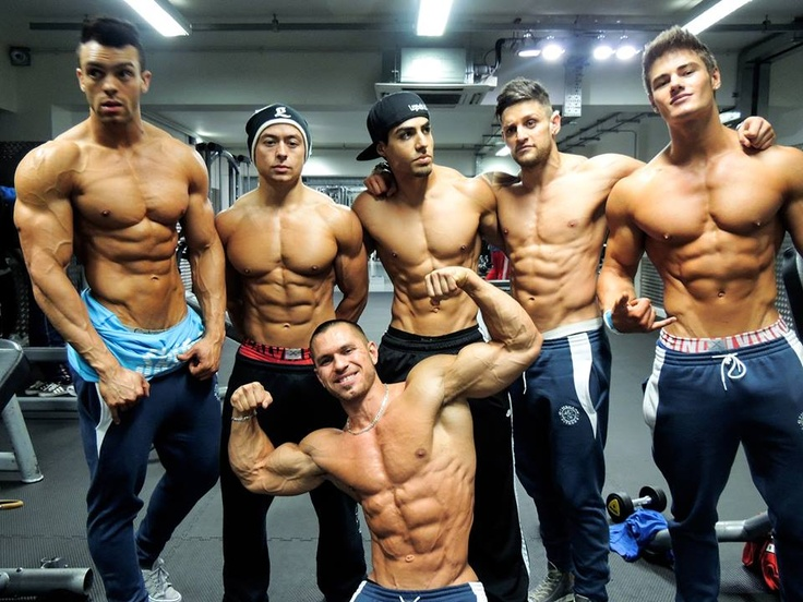 Happy steroid users - aesthetics crew