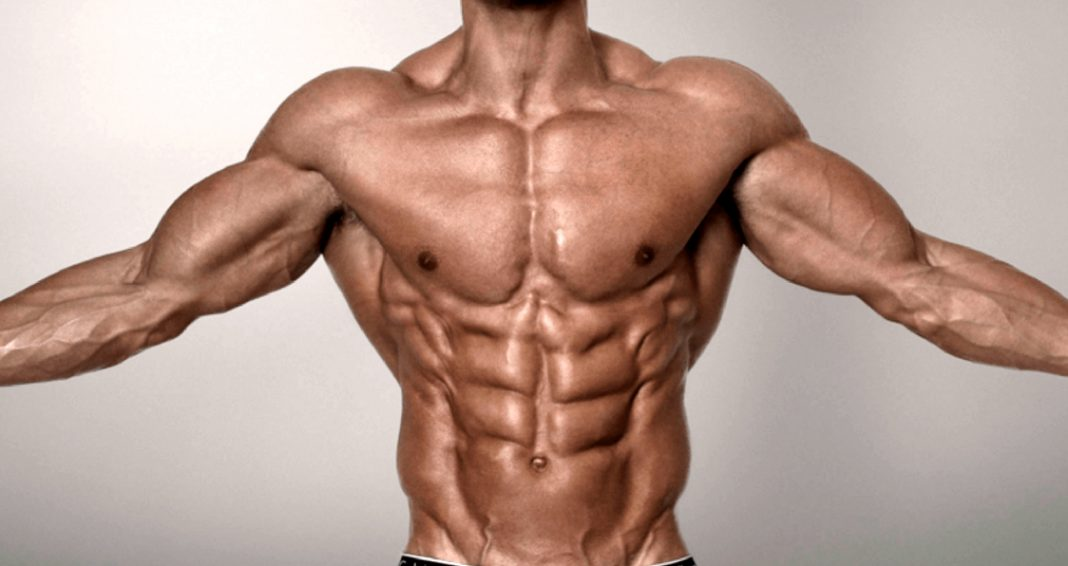 Human Growth Hormone Hgh Bodybuilding Cycle All You Need To Know Abcroids