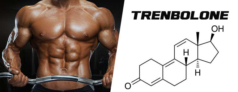 All about Trenbolone in Bodybuilding | abcRoids